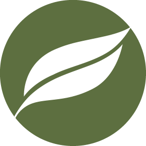 Wildtree Media Logo Green PNG